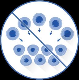 Keytruda (anti-PD1) resistance